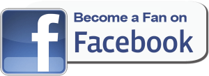 Facebook_Fan_Page_logo.png